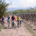 Mountain Bike por Bodegas en Mendoza