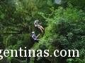 Yungas Adventure Tucumán