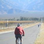 Valles Calchaquies Salta y Tucumán