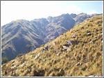 Pueblo escondido, Cerro Aspero, Merlo San luis